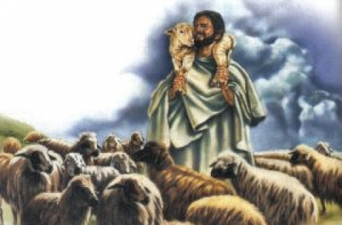 Il Signore mi guida