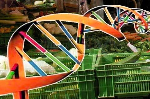 Oltre i limiti della genetica