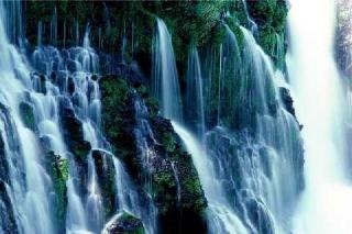 Gesù sorgente di acqua viva (Benedettine di S. Maria di Rosano)