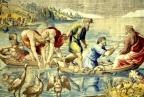 I pesci del Kinneret