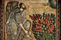 Mosè, un roveto che arde e non brucia: Es 3,1-22 (Sandro Carotta)