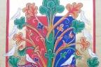 Alberi commestibili e non commestibili… (Genesi cap. 2, vers. 16-17) (Simone Venturini)