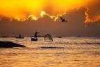 Ami e trappole usate nel lago di Galilea