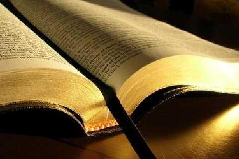 Il testo biblico tra il dire e il detto (Maria Cristina Laurenzi)
