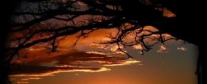 I Salmi: la poesia della preghiera