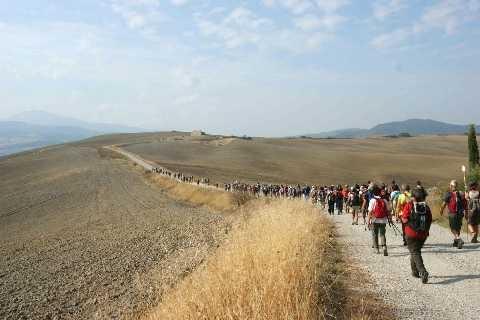 Via Francigena: con il Giubileo a piedi fino al centro di Roma (Matteo Nardi)