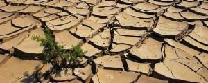 Una teologia declinata al futuro. A Dakar per un'agenda planetaria in prospettiva liberatrice (Claudia Fanti)
