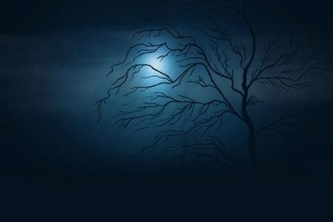 Chiamate ad illuminare di luce profetica le tenebre del mondo (Liliane Sweko, SNDdeN)