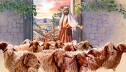 IV Domenica di Pasqua   –  Domenica 22 Aprile 2018 -