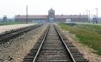 1. Il concetto di Dio dopo Auschwitz di Hans Jonas (a cura di Chiara Omassi)
