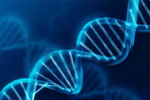 Bioetica e futuro (Enrico Chiavacci)