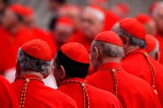 Per l'introduzione di cardinali laici