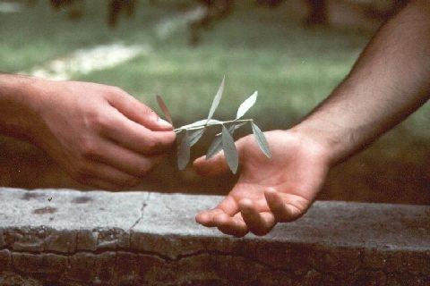 Cristiani uniti per la pace (Brunetto Salvarani)